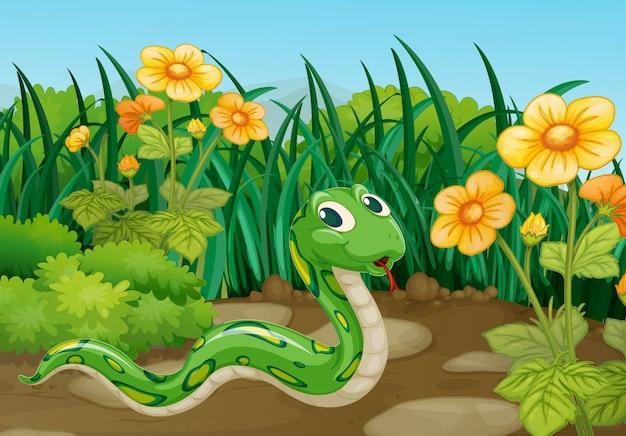 Serpent vert dans le jardin