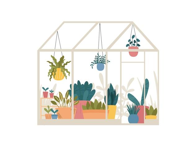 Serre avec des plantes de jardin en pot et suspendues