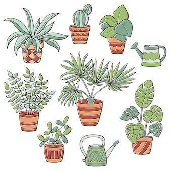 Serti de plantes d'intérieur en pot et d'arrosoirs sur blanc