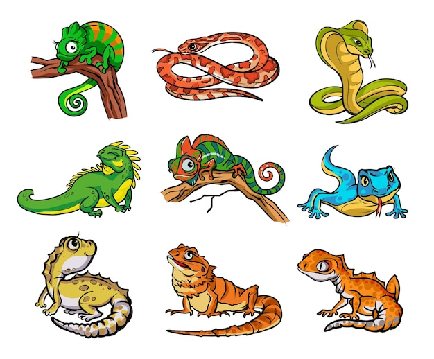 Sertie de beaux reptiles de dessins animés différents, de serpents et de lézards. collection avec des reptiles, illustration dessinée à la main de serpents. conception pour papiers peints, emballages, cartes postales et affiches. nature sauvage. isolé