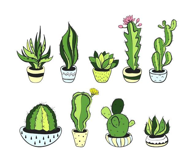 Sertie de cactus mignon, illustration vectorielle eps 10.