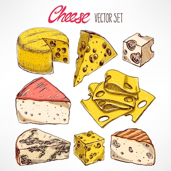 Sertie de divers fromages dessinés à la main. illustration dessinée à la main