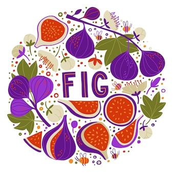 Sertie de figues sur branches, moitiés et morceaux de figues, fleurs de figues et graines. griffonnage lettrage fig. fond de nourriture. légumes plats sur blanc. végétalien, cultivé, naturel