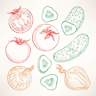 Sertie de légumes de croquis. tomates, concombres, oignons