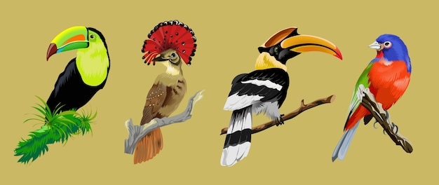 Sertie d'oiseaux rares tropicaux brillants