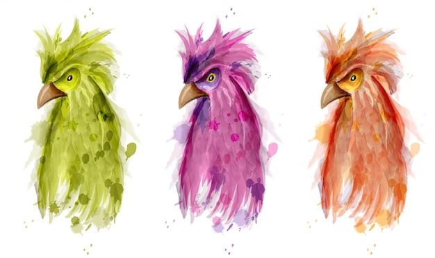 Set aquarelle oiseau perroquet