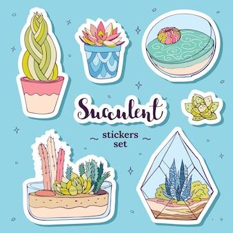 Set d'autocollants de plantes succulentes dessinés à la main vector