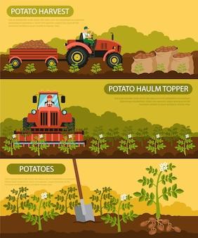 Set de bannières plates récolte de pommes de terre et pommes de terre.