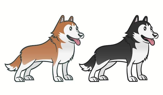 Set chien husky sibérien.
