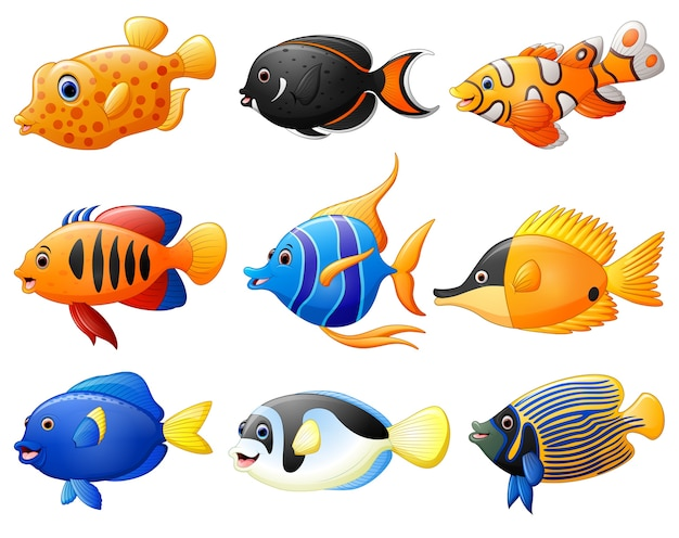 Set de dessin animé de poisson