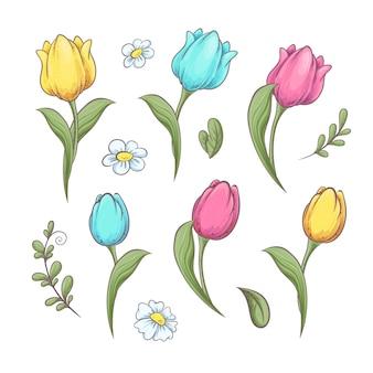 Set fleurs tulipes