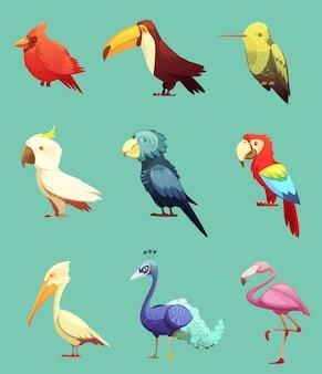 Set d'icônes rétro exotiques oiseaux tropicaux