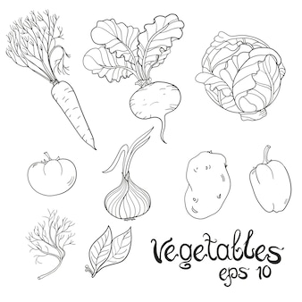 Set de légumes dessinés à la main. collection de croquis de nourriture.