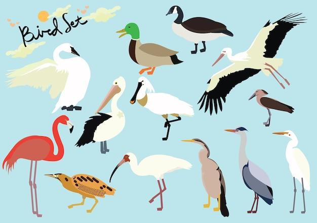 Set d'oiseaux