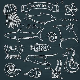 Set de tableau sealife