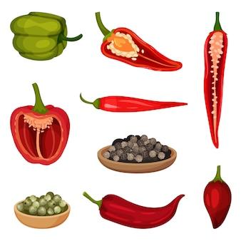Set de vector plate d'icônes de poivre.