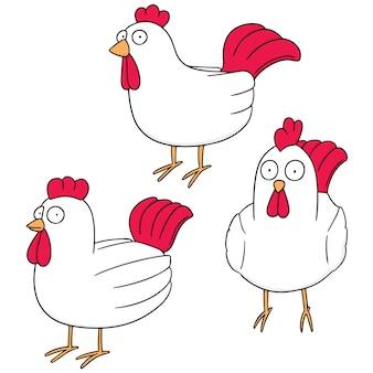 Set vector de poulet