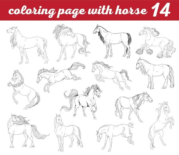 Seth coloriage avec des chevaux
