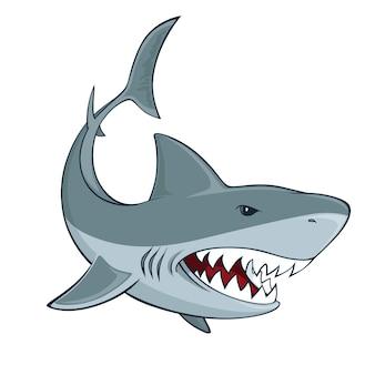 Signe de requin