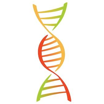 Signe de molécule d'adn, élément génétique