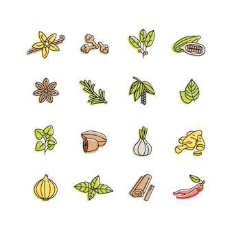 Signes d'épices différentes dans un style linéaire branché isolé sur blanc