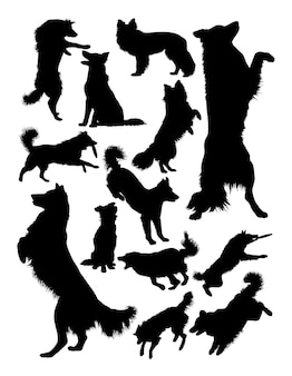 Silhouette animal chien colley