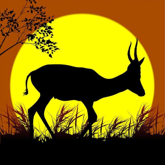 Silhouette d'antilope marchant
