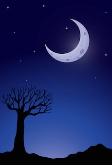 Silhouette arbre la nuit