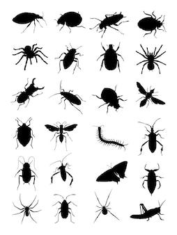 Silhouette de bugs