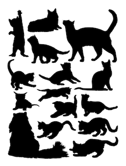 Silhouette de chat