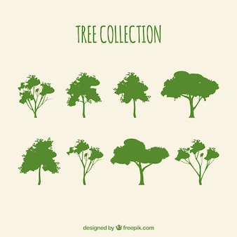 Silhouette collection arbre