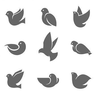 Silhouette de colombe gris sur blanc