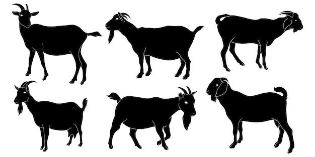 Silhouette dessinée de chèvre à la main