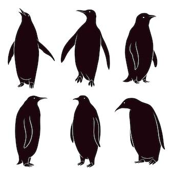 silhouette dessinée de pingouin à la main