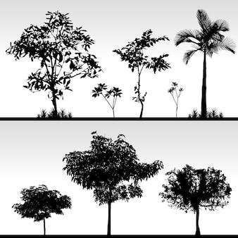 Silhouette d'herbe d'arbre
