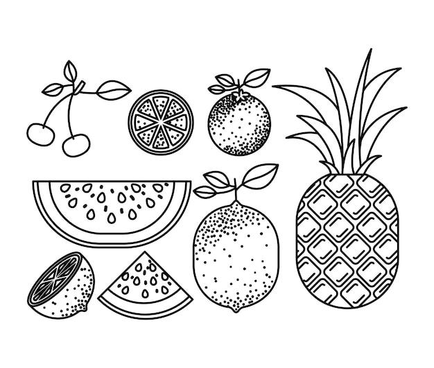 Silhouette monochrome avec ensemble de fruits tropicaux