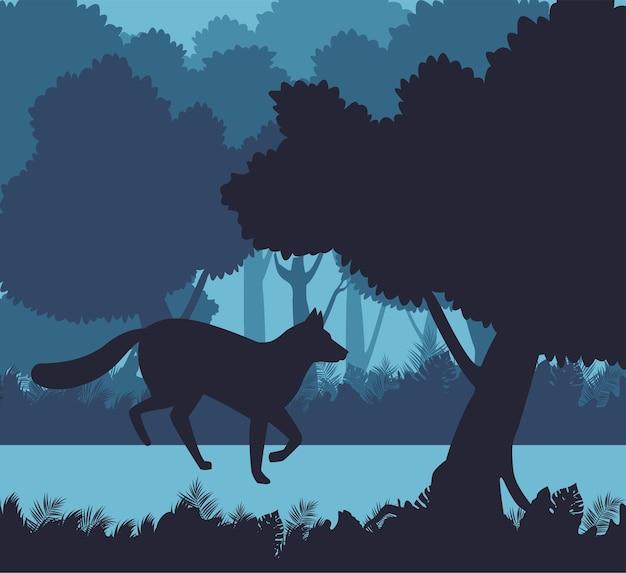 Silhouette de nature animale renard sauvage en scène de paysage