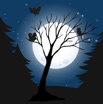 Silhouette nuit noire et oiseaux
