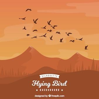 Silhouette oiseau volant