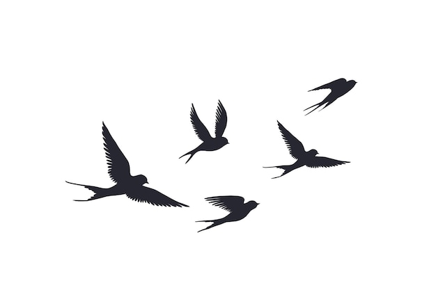 Silhouette d'oiseaux volants sur fond blanc. vecteur, ensemble, de, troupeau, de, hirondelles, signe, tatouage, printemps, oiseau