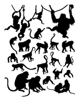 Silhouette de singe