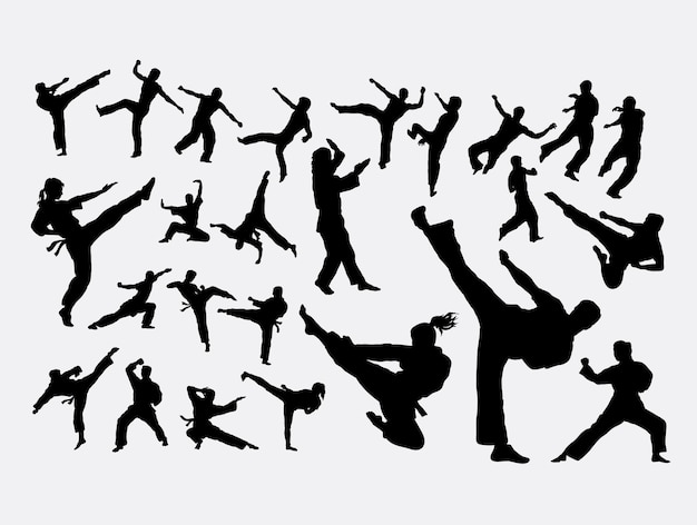 Silhouette de sport art martial