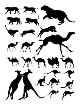 Silhouette de tigre kangourou chameau