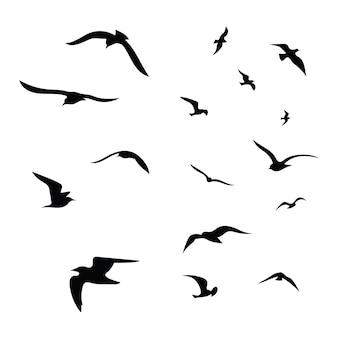 Silhouette d'un troupeau d'oiseaux. contours noirs d'oiseaux volants. pigeons volants.