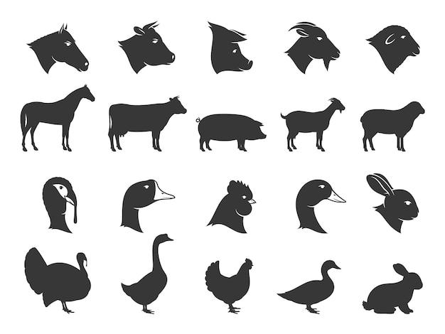 Silhouettes d'animaux de ferme isolées sur des icônes blanches de bétail et de volaille