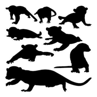 Silhouettes d'animaux kinkajou