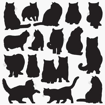 Silhouettes de chat british shorthair