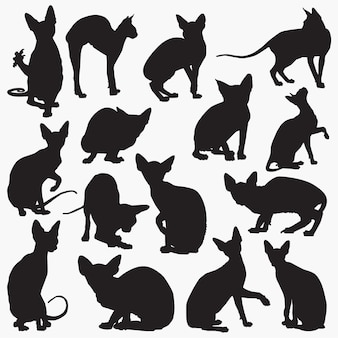 Silhouettes de chats sphynx
