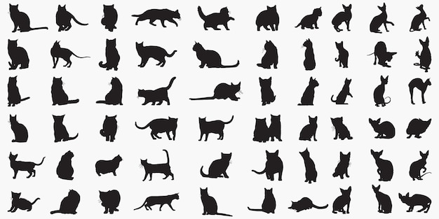 Silhouettes de chats