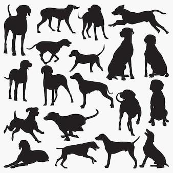 Silhouettes de chien weimaraner